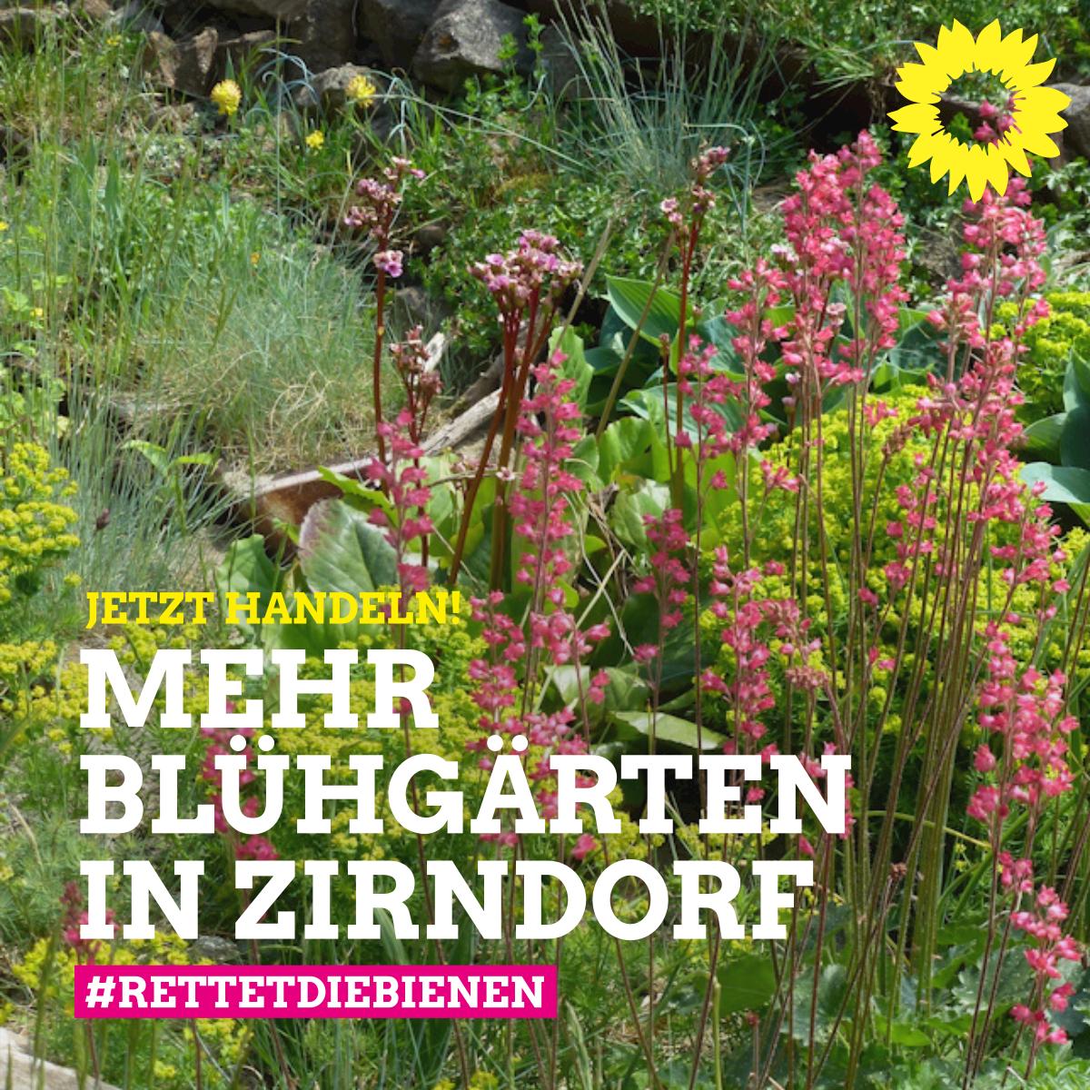 Zirndorfer Grüne wollen mehr Artenvielfalt und weniger Steingärten